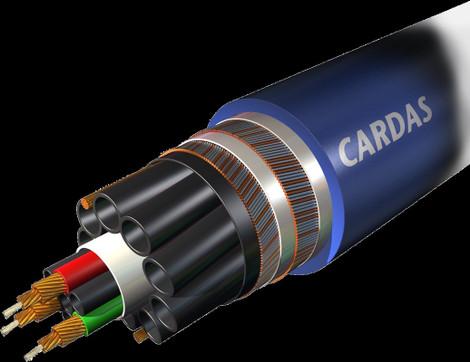A161202cardasclearst